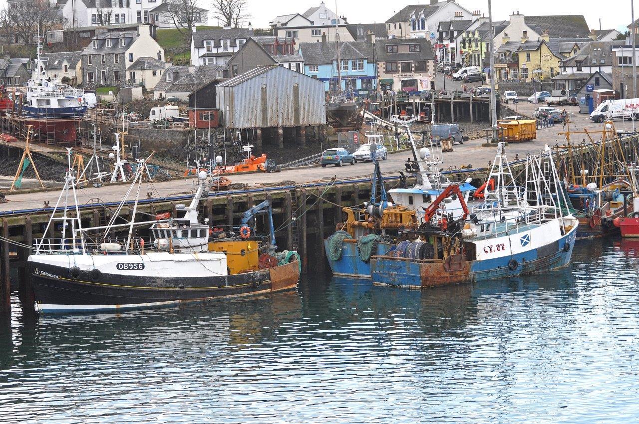 sff_mallaig_fishing_boats