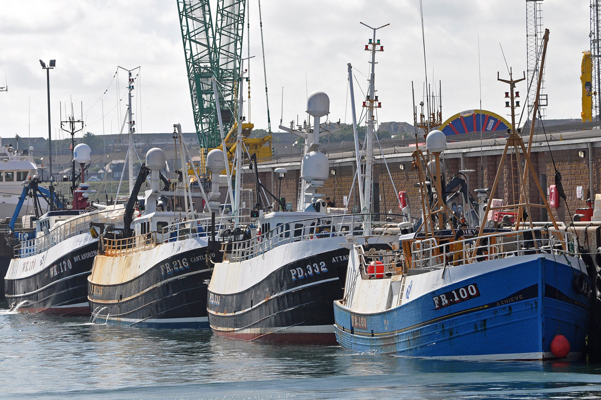 Fishing boats moored up in harbour